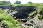 Seine River bank erosion