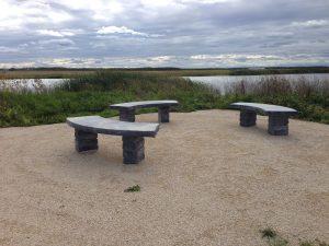 Wetland Observation
